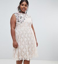 Little Mistress Plus Embellished Lace Skater Midi Dress Cream