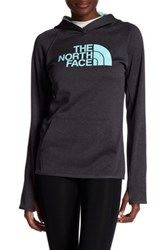 The North Face Logo Hooded Pullover Gray