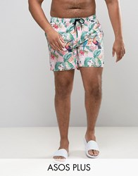Asos Plus Swim Shorts In Pink Tropical Floral With Triangle Print In Mid Length Pink
