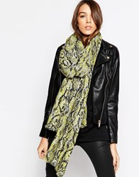 French Connection Boa Scarf Yellow