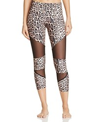 Onzie Leopard And Mesh Capri Leggings