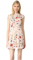 Alice Olivia Ariel Embroidered Cap Sleeve Dress Champagne Multi