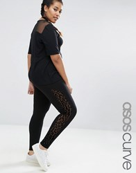 Asos Curve Leopard Print Mesh Side Panel Legging Black