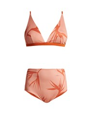 Haight High Rise Triangle Bikini Pink Print
