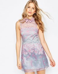 Asos Contrast Embroidered Collar Organza Mini Skater Dress Lilac Purple
