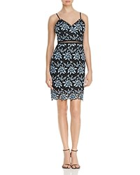 Aqua Two Tone Lace Bodycon Dress Blue Black