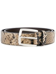 Just Cavalli Snake Skin Effect Belt Nude And Neutrals