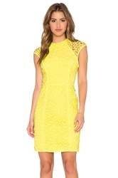 Lumier Heart Contours Lace Sheer Cap Sleeve Dress Yellow