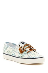 Sperry Seacoast Fish Circle Sneaker Blue