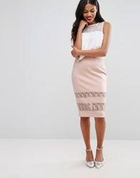 Girls On Film Pencil Skirt With Lace Panels Nude Pink