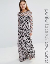 True Decadence Petite All Over Embroidered Contrast Lace Maxi Dress Multi