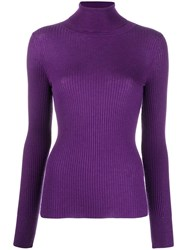 Snobby Sheep Ribbed Roll Neck Top Purple