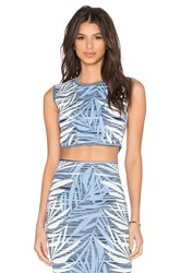 Bcbgmaxazria Jaylenne Crop Top Blue