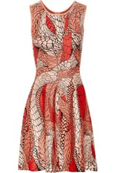 Issa Printed Stretch Jacquard Dress Tomato Red