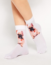 Asos Christmas French Bulldog Photo Socks White