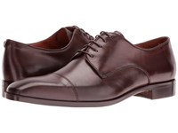 Massimo Matteo 5 Eye Cap Toe Brown Lace Up Wing Tip Shoes