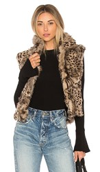Adrienne Landau Printed Rabbit Vest In Brown. Leopard