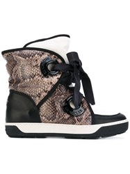 Moncler Snake Print Snow Boots Women Cotton Calf Leather Foam Rubber 35 Black