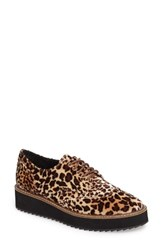 Shellys Women's London Emma Platform Oxford Leopard Velvet