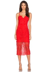 Lumier Follow Your Heart Lace Bustier Dress Red