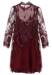 Free People Cocktail Dress Party Dress Wine Dark Red