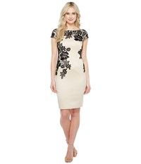 Adrianna Papell Appliqued Lace Sheath Dress Champagne Women's Dress Gold