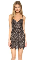 For Love And Lemons Vika Mini Dress Black