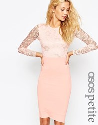 Asos Petite Lace Top Midi Pencil Dress Nude