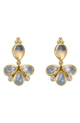 Temple St Clair Women's St. Royal Blue Moonstone And Diamond Drop Earrings