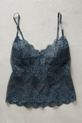 Anthropologie Cropped Lace Cami Grey