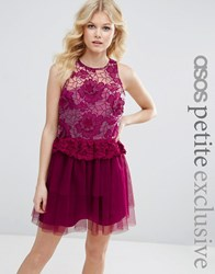 Asos Petite 3D Floral Lace Embroidered Mini Prom Dress Berry Pink