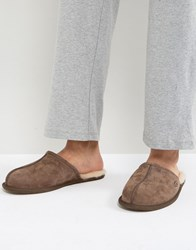 Ugg Scuff Suede Mule Slippers In Brown Brown