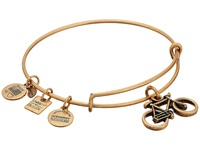 Alex And Ani Charity By Design Bike Charm Bangle Rafaelian Gold Finish Bracelet