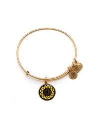 Alex And Ani Sunflower Charm Bangle Gold