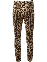 Dolce And Gabbana Leopard Print Leggings Brown
