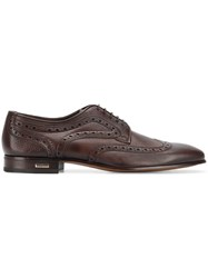 Baldinini Embroidered Derby Shoes Brown