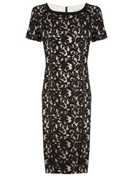 Planet Lace Shift Dress Black Champagne
