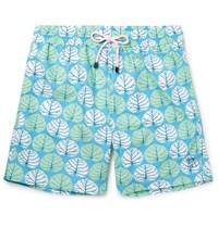 Pink House Mustique Mid Length Sea Grape Print Swim Shorts Green