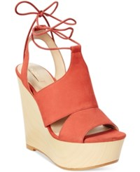 Aldo Women's Gwyni Platform Wedge Tie Up Sandals Terracotta