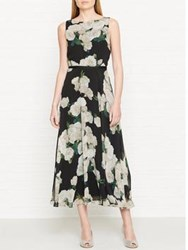 Hobbs Carly Floral Print Midi Dress Black