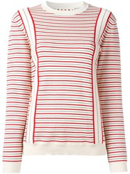 Marni Striped Sweatshirt Nude Neutrals