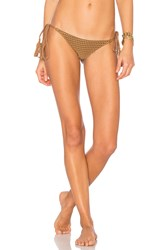 Acacia Swimwear Mesh Polihale Bottom Brown