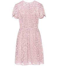 Valentino Cotton Blend Lace Dress Pink