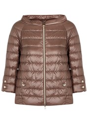 Herno Brown Quilted Shell Jacket Bronze