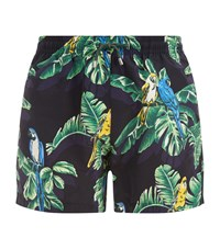Stella Mccartney Paradise Print Swim Shorts Black