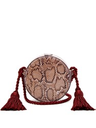 Hillier Bartley Python Effect Faux Leather Cross Body Bag Burgundy Multi