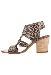 Mjus Majorca Sandals Sasso Arancio Brown