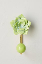 Anthropologie Horticulture Succulent Hook Blue Green