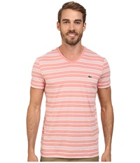 Lacoste Jersey Short Sleeve V Neck Striped Tee Shirt Trianon Pink White Men's T Shirt