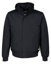 Dickies Cornwell Winter Jacket Black